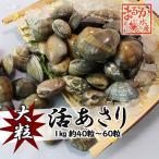 活あさり貝 国産 特大 1kg 約40粒〜60粒 [あさり貝]