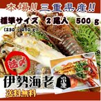送料無料 伊勢海老 活〆冷凍 標準サイズ 500g 2尾入  [伊勢海老] (活〆冷凍)