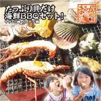 其它 - 送料無料 たっぷり貝だけ海鮮BBQセット!(サザエ12個大アサリ7個)[魚介類]