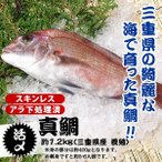 真鯛 - 真鯛 捌いてお届けします 1.2kg スキンレス、アラ下処理済(三重県産 養殖)[魚介類]