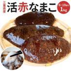 赤なまこ1kg(3?4個入) 送料無料 三重県産 活赤ナマコ(冬季限定)
