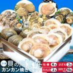 美し国 貝の 海宝焼 鳥羽産 牡蠣 8個 さざえ 2個 大あさり 2個 あっぱ貝4個 送料無料 冷凍貝 (牡蠣ナイフ、片手用軍手付) カンカン焼き ミニ缶入