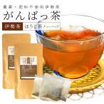 伊勢茶 有機ほうじ茶ティーバッグ12包 メール便送料無料 有機JAS認定 お茶 日本茶 三重県産 農薬・肥料不使用栽培
