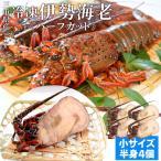 伊勢海老半身 小サイズ4個 鮮度の良い三重県産伊勢海老を瞬間凍結 調理しやすいよう半分にカット 海鮮 バーベキュー BBQ テルミドール イセエビ いせえび