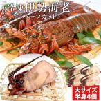 伊勢海老半身 大サイズ4個 鮮度の良い三重県産伊勢海老を瞬間凍結 調理しやすいよう半分にカット 海鮮 バーベキュー BBQ テルミドール イセエビ いせえび