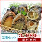 夏の選べる特選活貝2種詰合せ 送料無料 さざえ・ムール貝・あっぱ貝・大アサリ・岩牡蠣の内お好みの2種類をお選びいただけます!