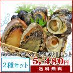 夏の選べる特選活貝2種詰合せ 送料無料 白あわび・さざえ・ムール貝・岩牡蠣・大アサリ・あっぱ貝の内お好みの2種類をお選びいただけます!