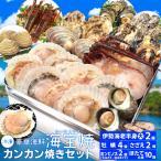 美し国 豪華 海鮮 海宝焼 伊勢海老 大きめ1尾 鳥羽産 牡蠣 8個 さざえ 2個 大あさり 2個 (牡蠣ナイフ、片手用軍手付) 冷凍 カンカン焼き ミニ缶入