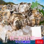 桃こまち 牡蠣 サイズ 無選別 4kg(約50個〜60個入) 殻付き 牡蛎 発泡箱入り 加熱用 (牡蛎ナイフ・片手用軍手付き) 海鮮バーベキュー