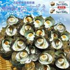 三重県伊勢志摩産海女漁の天然活さざえ500g サザエのサイズと個数が選べます!