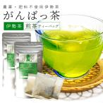 伊勢茶 有機煎茶ティーバッグ15包 メール便送料無料 有機JAS認定 お茶 日本茶 三重県産 農薬・肥料不使用栽培
