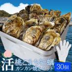 牡蠣カンカン焼きセット30個入 冷凍牡蠣(3.5kg前後) 送料無料 旬凍桃こまち 鳥羽産 ミニ缶入(牡蠣ナイフ・片手用軍手付き)殻付き 海鮮バーベキュー