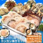 美し国 豪華 海鮮 海宝焼 伊勢海老 小1尾 鳥羽産 牡蠣 8個 さざえ 2個 大あさり 2個 (牡蠣ナイフ、片手用軍手付) 冷凍 カンカン焼き ミニ缶入