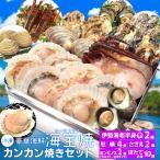 美し国 豪華 海鮮 海宝焼 伊勢海老 中1尾 鳥羽産 牡蠣 8個 さざえ 2個 大あさり 2個 (牡蠣ナイフ、片手用軍手付) 冷凍 カンカン焼き ミニ缶入