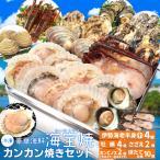 美し国 豪華 海鮮 海宝焼 伊勢海老 小2尾 鳥羽産 牡蠣 8個 さざえ 2個 大あさり 2個 (牡蠣ナイフ、片手用軍手付) 冷凍 カンカン焼き ミニ缶入