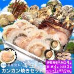 美し国 豪華 海鮮 海宝焼 伊勢海老 中2尾 鳥羽産 牡蠣 8個 さざえ 2個 大あさり 2個 (牡蠣ナイフ、片手用軍手付) 冷凍 カンカン焼き ミニ缶入