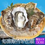 桃こまち 牡蠣 50個入 冷凍 殻付き 牡蠣 三重県 鳥羽産 加熱用 (発泡箱入・牡蠣ナイフ・片手用軍手付き) 海鮮 バーベキュー セット