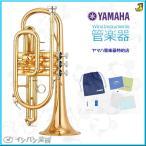 YAMAHA / YCR-4330GII GL B♭コルネット【でら得!!名古屋セット】【5年保証】【名古屋栄店】