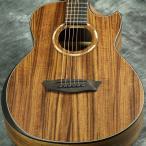 Washburn / WCGM55K Natural ワッシュバーン アコースティックギター (Comfort Series)(送料無料)
