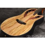 Ovation Celebrity Elite Plus / CE44P-SM Spalted Maple CE-44P(お取り寄せ商品)(送料無料)