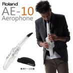 Roland / Aerophone AE-10 エアロフォン(ヘッドフォンプレゼント:551540000)(送料無料)(ご予約受付中:納期7月下旬)