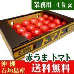 赤うまトマト A品4kg(産地直送野菜) 送料無料