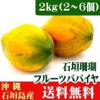 フルーツパパイヤ 石垣珊瑚2kg (2〜6個) 送料無料
