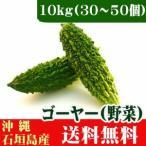 まとめ買いゴーヤー(苦瓜)沖縄県石垣島産10kg(30〜70本) 送料無料