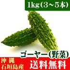 沖縄石垣島産ゴーヤー(苦瓜) 1kg(3〜5本) 送料無料