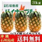 パイナップル(ハワイ種)石垣島産 6玉(約7.5kg)