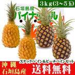 石垣島パインセット スナックパイン・ピーチパイン 3kg 3〜5玉 沖縄