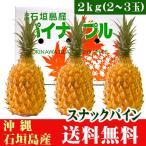 スナックパイン2kg(2〜3玉) 沖縄県石垣島産 送料無料