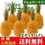 スナックパイン 6kg 6〜8玉 沖縄 石垣島産