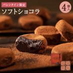 【バレンタイン】  ソフトショコラ 4個入   バレンタイン お取り寄せ ギフト スイーツ チョコレート チョコ チョコスイーツ お菓子 洋菓子 CT−4 29543
