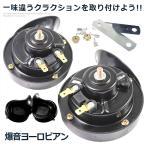 爆音 ヨーロピアン 電子ホーン 快音 クラクション 12V 24V ブラック ET-HORN02