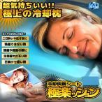 極楽ッション 冷却シート 枕 クッション ピロー 睡眠 熟睡 二日酔い 発熱 風邪 生理 夜 快適 GOKURAKUSHON
