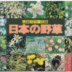 山渓カラー名鑑 日本の野草//山と渓谷社