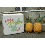 くがにパイン(くがにパイナップル) 2〜3個 約3kg 沖縄・石垣島産より直送