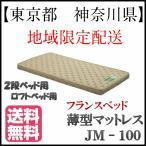 東京都 神奈川県 地域限定配送 フランスベッド 送料無料 日本製 JM100シングル 2段ベッドハイベッド ロフトベッド 超薄型マットレス高密度連続スプリング