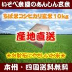 米 玄米 10kg ちば米 コシヒカリ 29年産 綺麗仕上 本州四国 送料無料 精米無料 紙袋