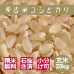 米 玄米 25kg 多古米 コシヒカリ 29年産 綺麗仕上 本州四国 送料無料 精米無料 小分け可