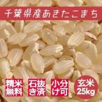 米 玄米 25kg あきたこまち 29年産 綺麗仕上 本州四国 送料無料 精米無料 小分け可