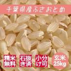 新米 米 玄米 25kg ふさおとめ 令和1年産 綺麗仕上 本州四国 送料無料 精米無料 小分け可