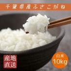 米 白米 10kg 5kg×2袋 29年産 ふさこがね 本州四国 送料無料