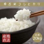 米 白米 20kg 30年産 多古米 コシヒカリ 本州四国 送料無料