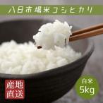 米 白米 5kg 29年産 八日市場米 コシヒカリ 本州四国 送料無料