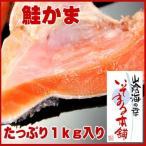 Salmon - 訳あり 鮭(サケ・さけ)鮭カマたっぷり1kg(500g×2)(チリ産サケ)無塩仕上げで脂ノリノリ