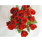 ショッピングアニバーサリー バラ 花束 12本 赤バラ(本体価格4,200円)