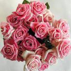 ショッピングアニバーサリー バラの花束15本 ピンク15本 (本体価格5,250円)