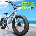 ファットバイク 20インチ 極太タイヤ シマノ 7段変速 Wディスクブレーキ 自転車本体 街乗り 雪道 海岸 EIZER F120